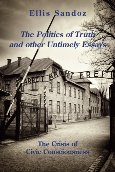 Politics of Truth and Other Untimely Essays, The